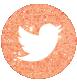 Twitter Sparkle Icon