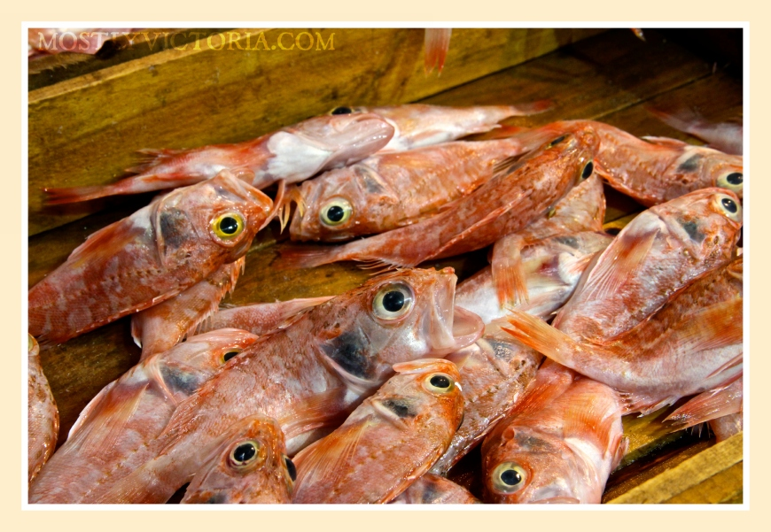 Fish Eyes Central Market Athens Greece MostlyVictoria ©